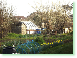 Picture of Shacklecross Allotments